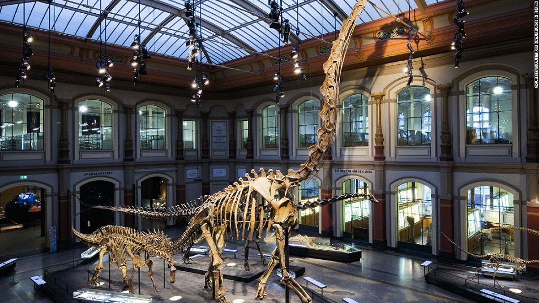 10 of the world 39 s best dinosaur museums for Top ten museums in the world