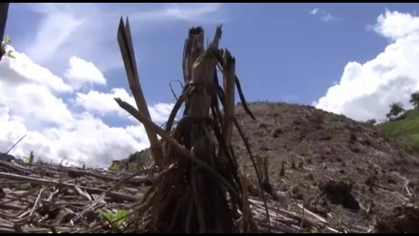 cnnee pkg sandoval honduras drought affecting crops_00011903