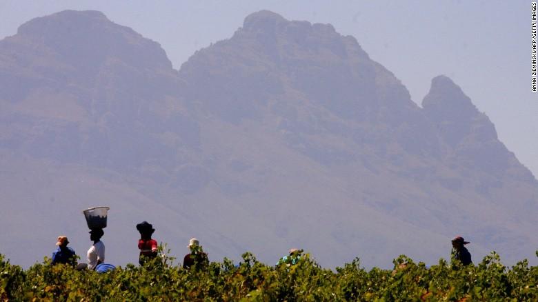 Een aspect dat bepaalt Zuid-Afrika & # 39; s wijnindustrie apart is de alomtegenwoordigheid van ethische accreditaties.  Het is de grootste producent van Fairtrade wijn - & lt; a href = & quot; http: //www.fairtrade.org.uk/en/media-centre/news/september-2016/fairtrade-at-wines-of-south -africa-trade-tasting-event & quot;  target = & quot; _blank & quot; & gt; goed voor tweederde & lt; / a & gt;  van de wereldwijde omzet.