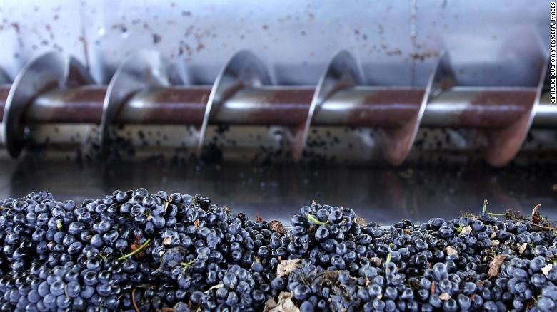 Buitenlandse investeerders zoals Richard Branson en Franse wijn gigantische AdVini zijn het opkopen van de wijngaarden in Zuid-Afrika als het land & # 39; s kwaliteitswijnen terrein winnen op de mondiale markt, met de kwaliteit rode wijnen zoals Cabernet Sauvignon het voortouw nemen.