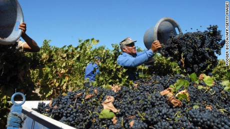 Quality reds like Cabernet Sauvignon have seen a boost in reputation