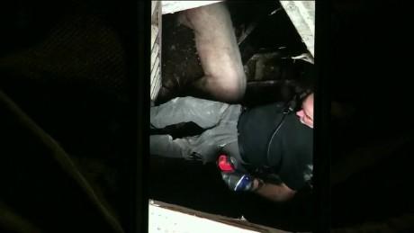 cnnee vo pig rescue detroit _00000930