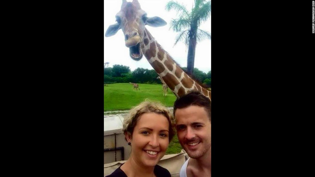 A giraffe photo-bombs Irish couple Lisa Kennedy and Gary King as they vacationed at Busch Gardens in Tampa, Florida. The photo went viral this past week.