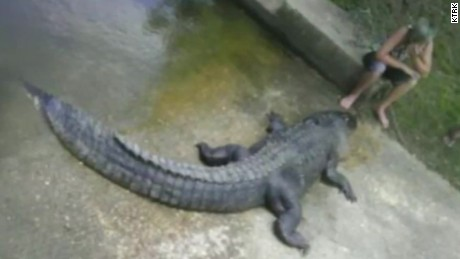 texas man caught alligator pkg_00003022
