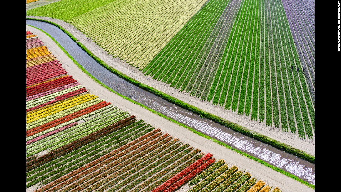 "<strong>3rd Prize Winner, Places category</strong>: Tulip fields <a href=""http://www.dronestagr.am/between-sassenheim-and-voorhout-the-netherlands/"" target=""_blank"">between Sassenheim and Voorhout</a> in the Netherlands"