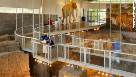 Learn more about Columbian mammoths and other Ice Age animals at the Waco, Texas, site.