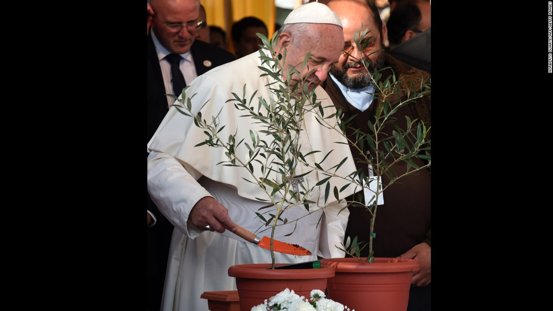 Pope Francis plants an olive tree in Asuncion's Banado Norte neighborhood on July 12.