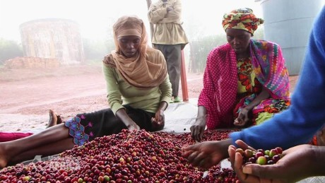 spc marketplace africa rwanda coffee a_00042123