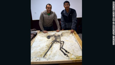 Steve Brusatte, left, and Lu Junchang posts in front of the Zhenyuanlong skeleton