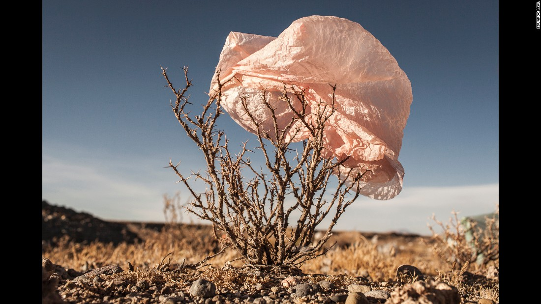 Leal acknowledges that plastic bag pollution might be the result of weak waste management infrastructures and a lack of education about how to take care of the environment.