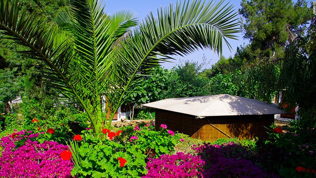 Guests can expect cozy bamboo huts among fruit trees at Atsitsa Bay. Full board with Mediterranean meals is on offer.
