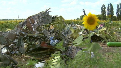 cnnee pkg patton mh17 one year_00002630