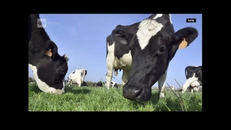 cnnee pkg alesci milk market_00002313