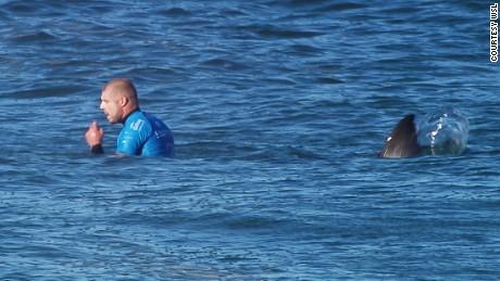 Mark Fanning attack by a shark