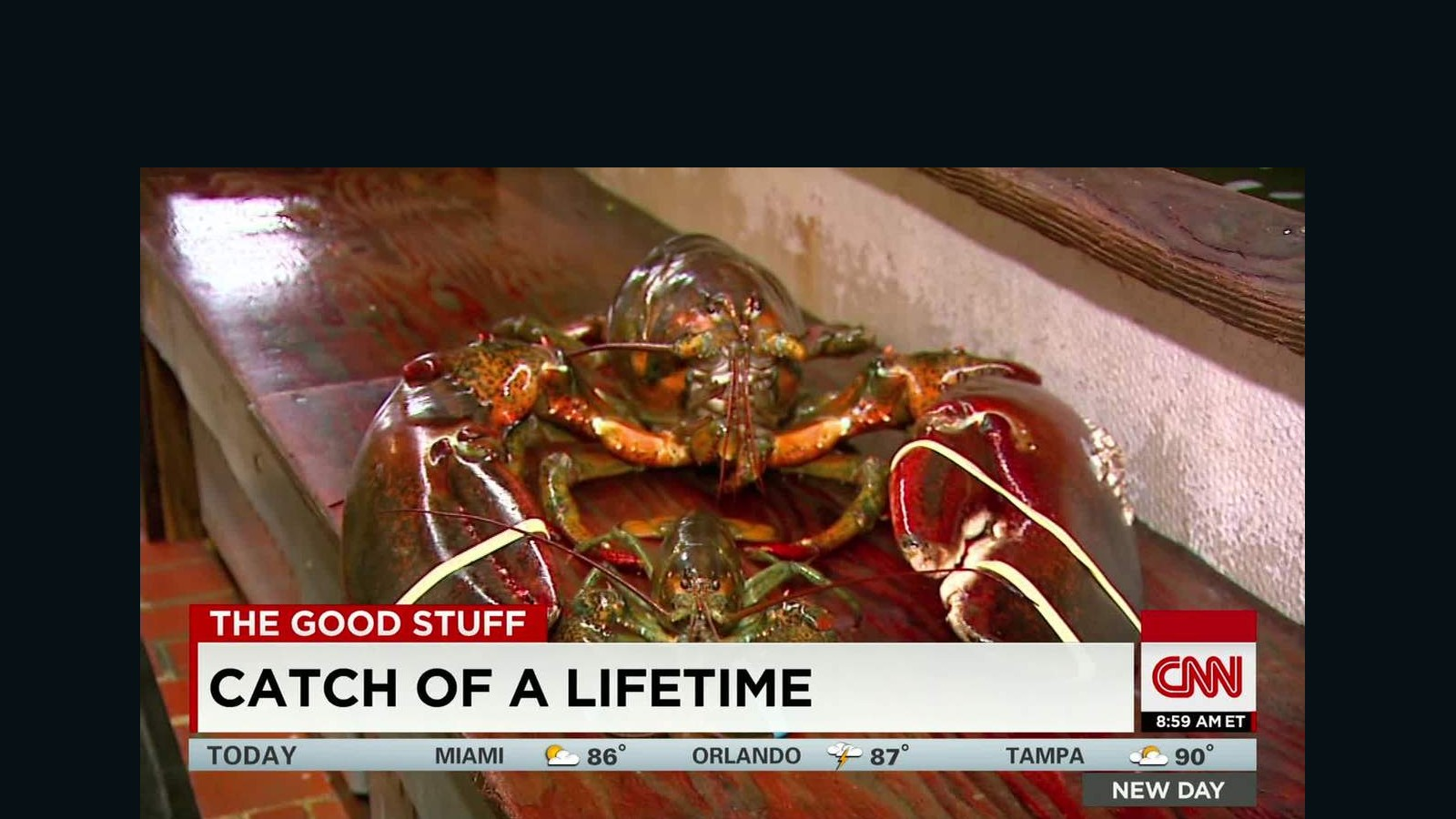 23-pound lobster is 95 years old - CNN Video