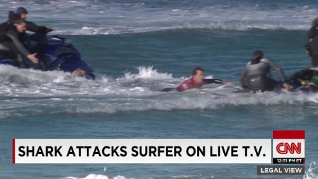Shark attacks surfer on live tv_00000000