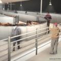 08 jfk animal terminal