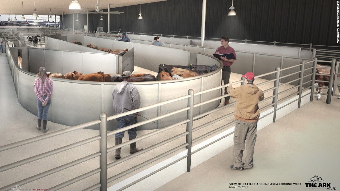 Livestock handling systems will also be part of the 178,000-square-foot animal terminal.