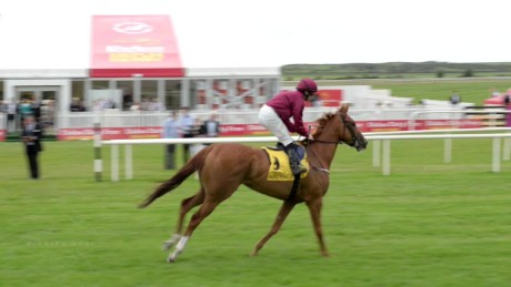 spc winning post july 2015 b block_00021208