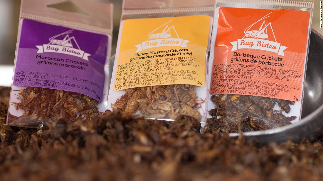 Crickets are sold in a range of appetizing flavors -- including honey mustard.