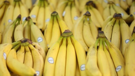 Are bananas going extinct ... again?