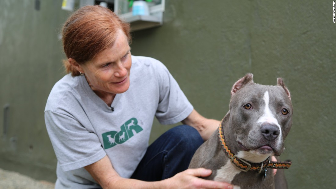 "<a href=""http://www.cnn.com/2015/07/23/us/cnn-heroes-weise/index.html"" target=""_blank"">Lori Weise</a> runs Downtown Dog Rescue, a nonprofit that provides resources to help low-income families keep and care for their pets near Skid Row in Los Angeles."