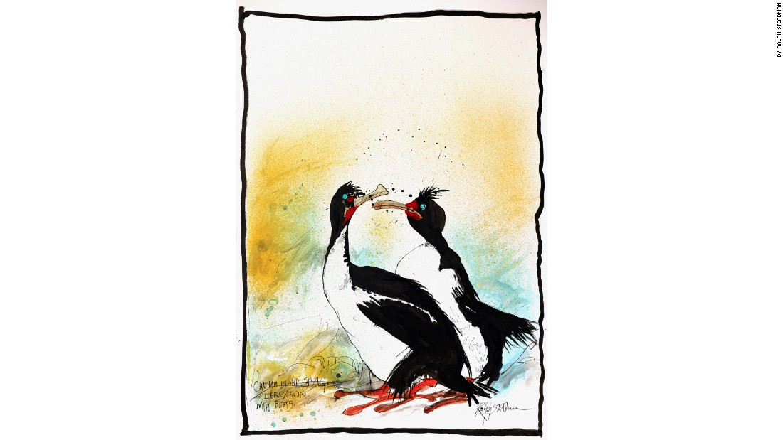 """Chatham Island Shag Altercation with Blots"" by Ralph Steadman."