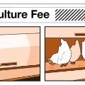 airline fees agriculture fee