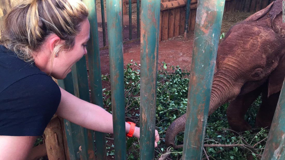 "Before Brooke left Africa, she took a trip to the David Sheldrick Wildlife Trust, where baby orphaned elephants are nursed back to health. Brooke and producer Lindsay ""adopted"" two of them; she couldn't help the fist bump."