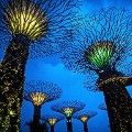 Singapore supertree grove FILE