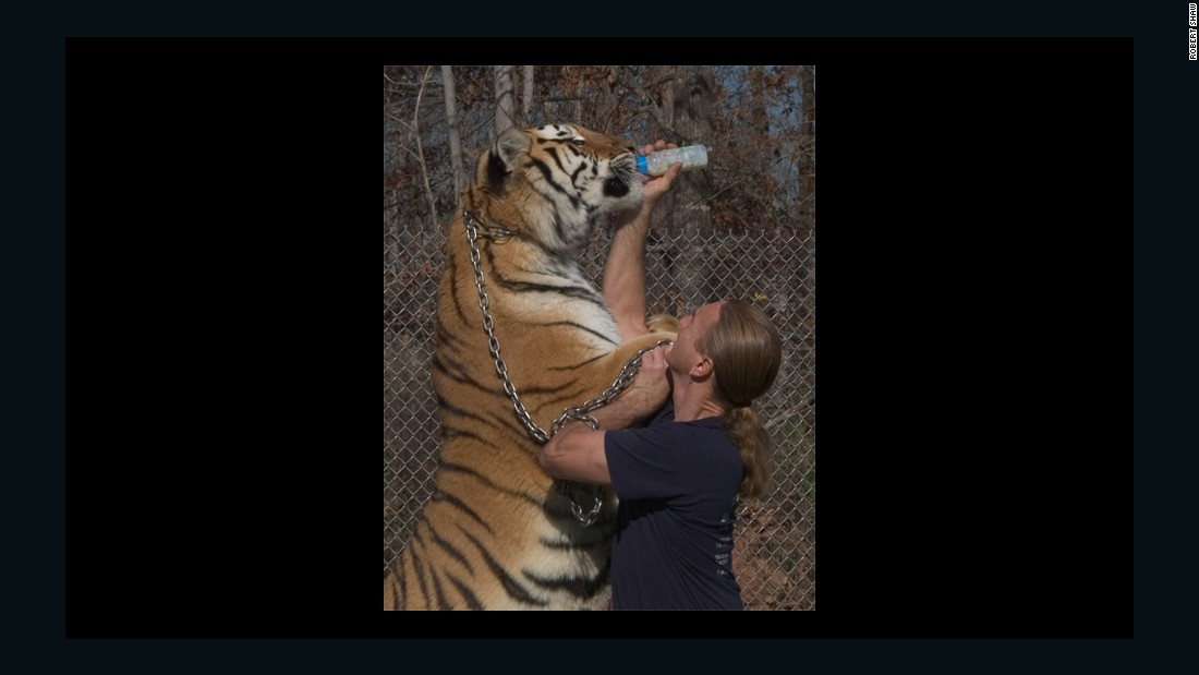 "Gress says: ""There are always going to be tigers in captivity in the U.S. You're never going to stop it. There are too many that they don't even know exist."" Gress opened his sanctuary about 22 years ago while working full time as an electrician."