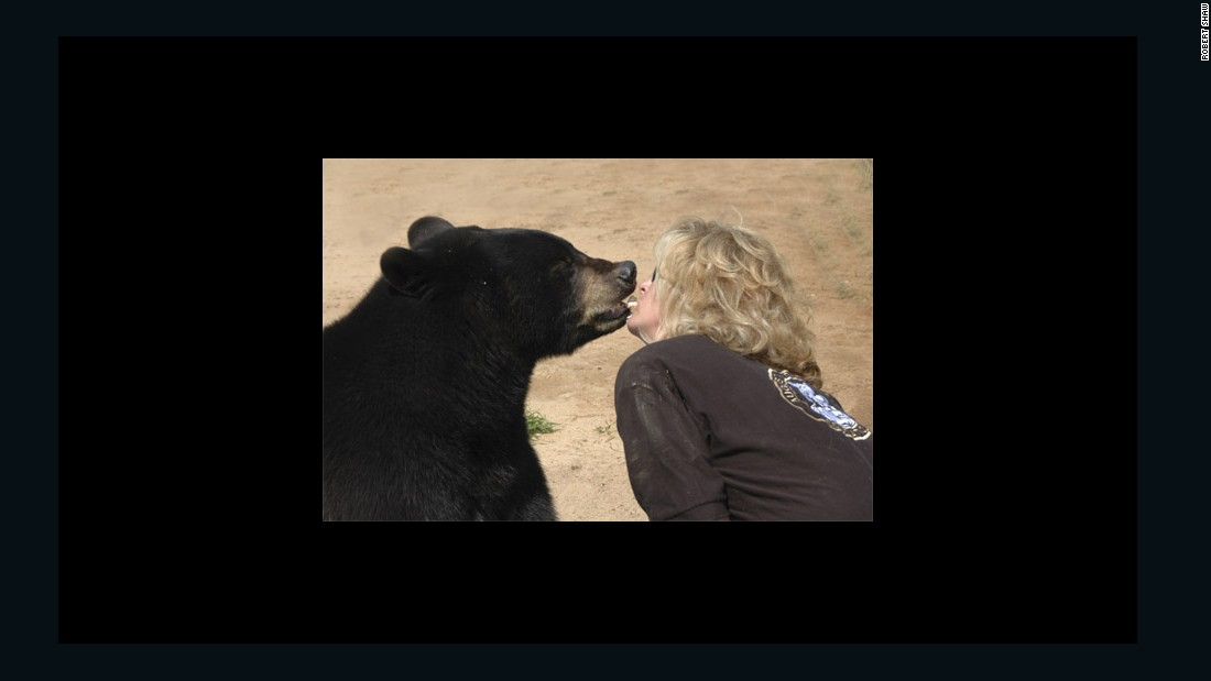 "Gress' ex-wife shows affection to the sanctuary's black bear, named Tegrid. ""They (the animals) didn't ask to be in a cage in the United States,"" says Gress. ""But they're here. And it's our job to make them comfortable."""