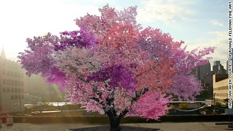 One tree grows 40 different types of fruit