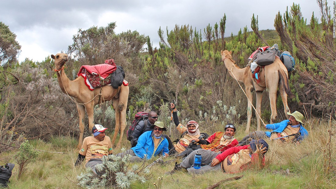 Majrin and his team had just three weeks to organize an expedition that would usually take months of planning, including training camels Zabeel and Al Shindagha, before the 10-day climb last December.