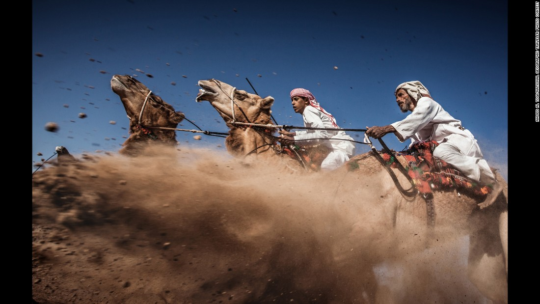 """Camel Ardah, as it called in Oman, is one of the traditional styles of camel racing ... between two camels controlled by expert men,"" Al Toqi said. ""The faster camel is the loser ... so they must be running (at) the same speed level in the same track. The main purpose of Ardah is to show the beauty and strength of the Arabian camels and the riders' skills. Ardah (is) considered one of the most risky situations, since always the camels' reactions are unpredictable (and) it may get wild and jump (toward the) audience."""