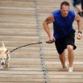 08 exercising with your dog RESTRICTED
