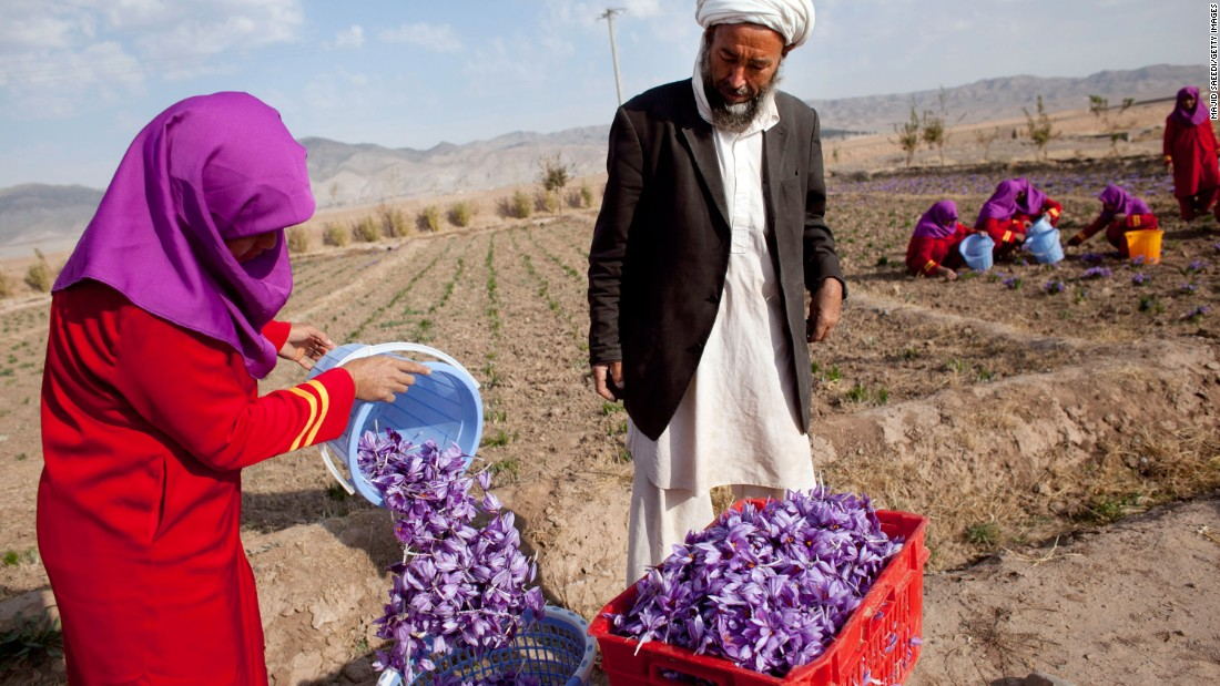 Competition has grown from Afghanistan in recent years, where farmers have switched from cultivating the poppy.