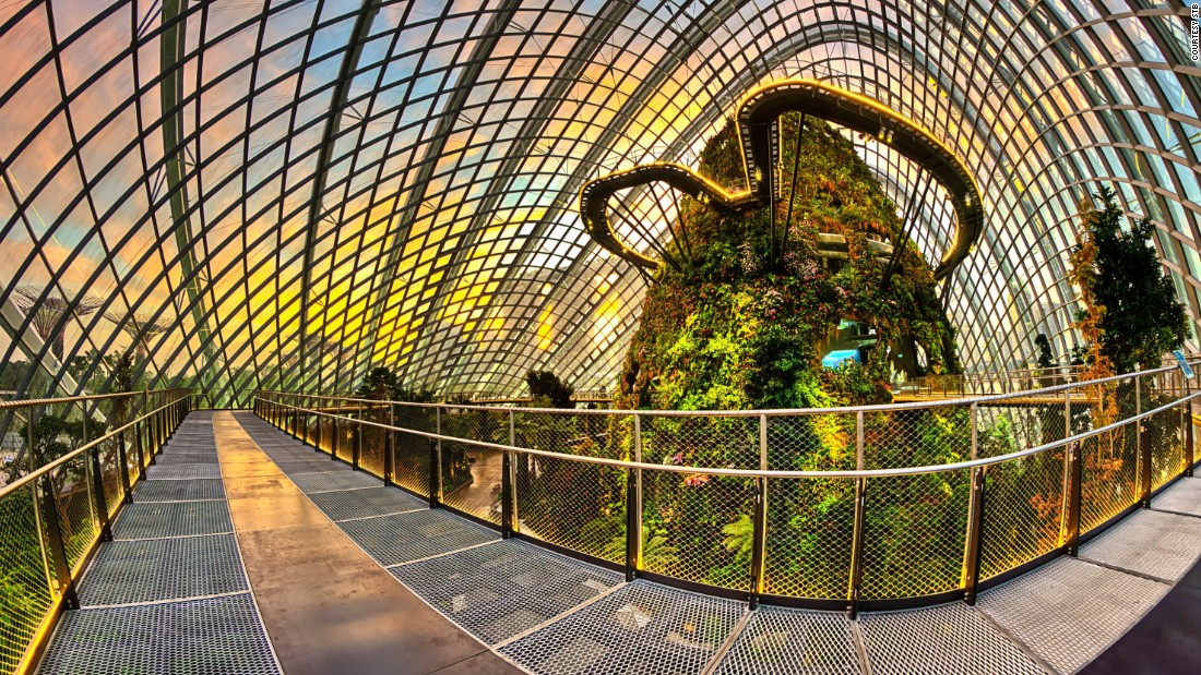 World's tallest indoor waterfall, supertrees, world's largest column-less greenhouse -- a walk through Gardens by the Bay is like visiting a theme park of plants.