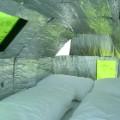 10. Urban campsites - Bedbug