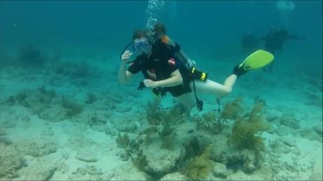 cnnee pkg rodriguez miami disable clean corals_00030327