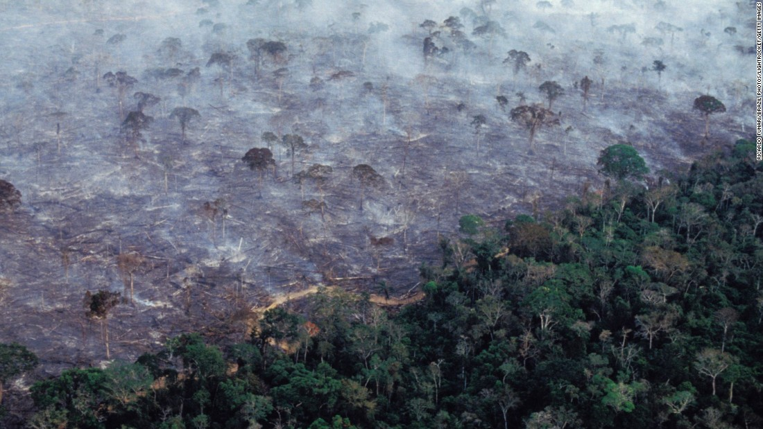 Forests trap carbon, so chopping down rainforests contributes considerably to the climate change problem. Estimates vary, but WRI says deforestation accounts for 5.7% of emissions linked to climate change. Other estimates put the number closer to 20%.
