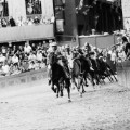 CNN_05_PALIO_Funnell_MG_3194