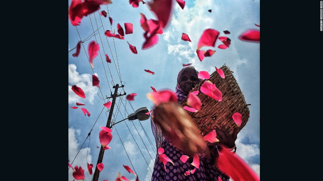 "An elderly Indian flower vendor spreads<a href=""https://instagram.com/p/5Z1Os7BNoK/"" target=""_blank""> rose petals</a> on the streets of city of #Kumbh #Allahabad"
