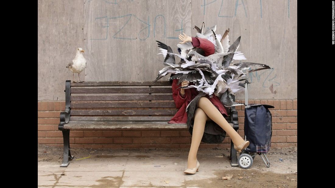 Over 50 artists from 17 countries were represented among the works shown. Banksy contributed a selection of new works of his own, including this installation of a woman being attacked by seagulls.