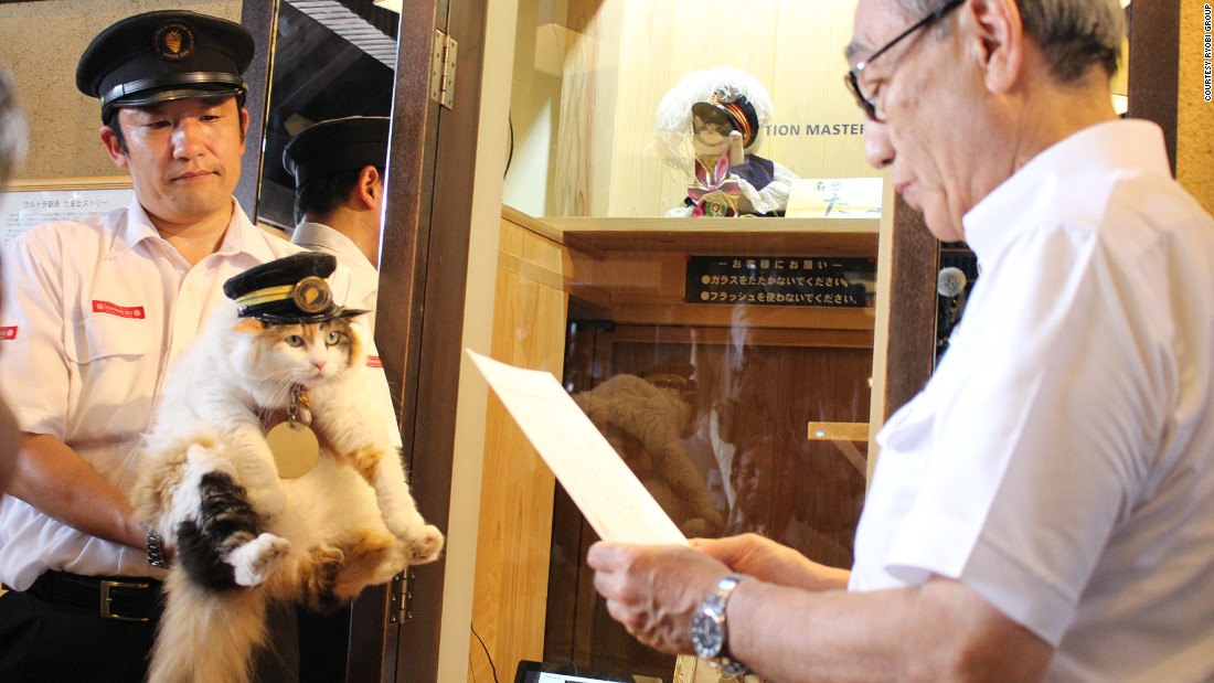 "Nitama, the new stationmaster of Kishi Station in Wakayama Prefecture, has been praised for her ""hat-wearing"" skills."