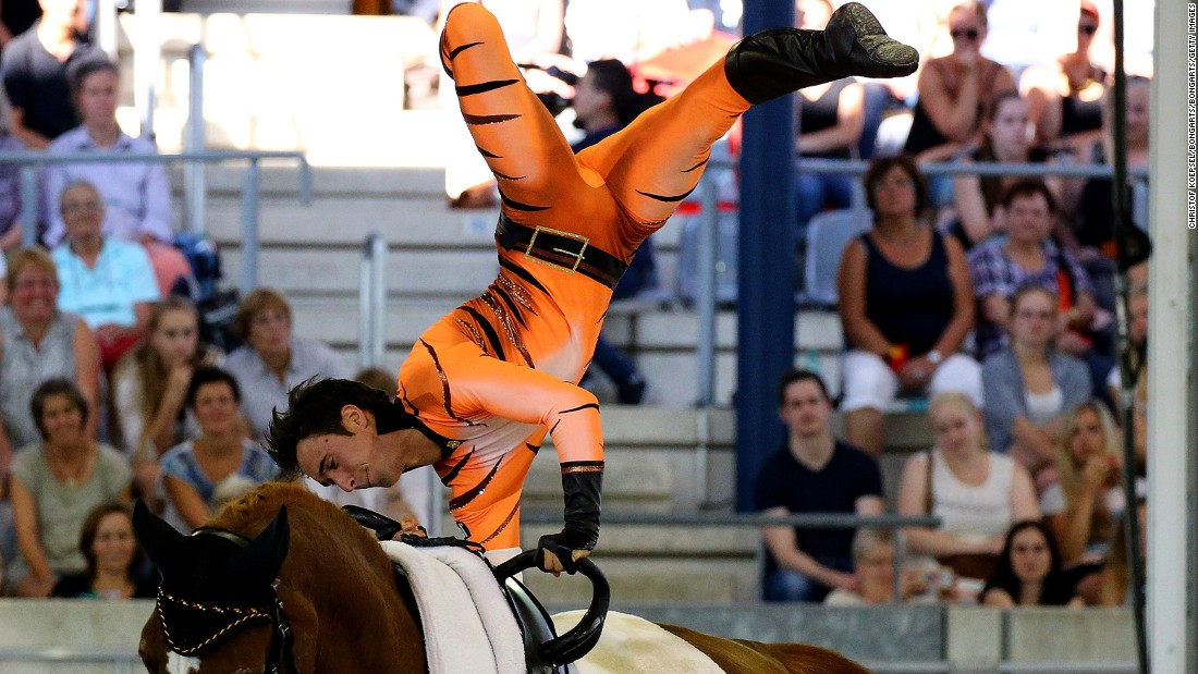 The German took second place behind his brother Viktor in the male vaulting freestyle test at the 2015 FEI European Equestrian Championship.