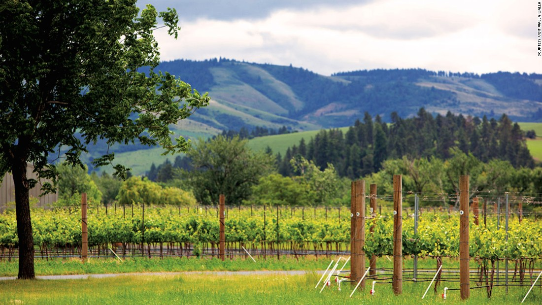 Though often overlooked in favor of Oregon's Willamette Valley, the lush Walla Walla Valley, which spans both Oregon and Washington, is one of the United States' most dynamic and fastest growing wine regions.