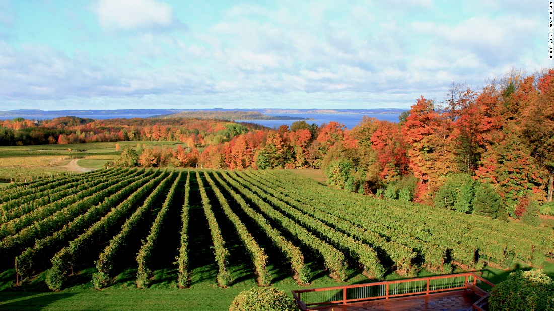 Michigan wine country is largely undeveloped, comprising just 100 or so small- to medium-sized wineries and just more than 3,000 acres of wine-producing vineyards. Yet the new wines coming out of the region are terrific.