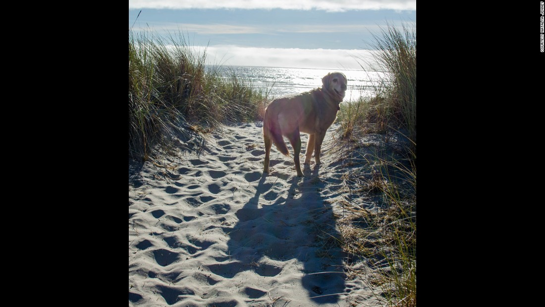 Dood got to see the beach for the first -- and last -- time, before his trip back to Utah.