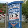 08 jamaica lottery raid